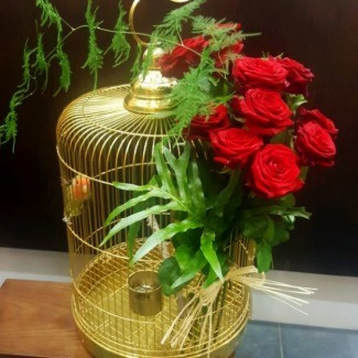 Cage with 2 birds And Roses