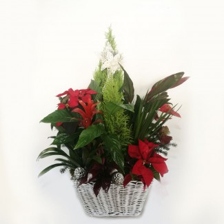 Christmas Huge arrangement