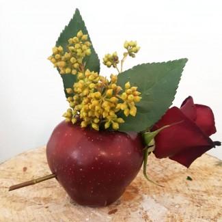 Apple of Life
