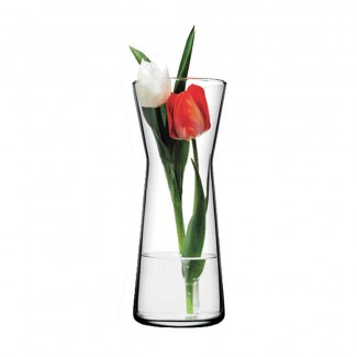 Couple Tulips in A Vase
