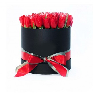 Tulips in Black Box