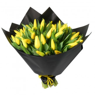 Yellow Tulip Wrapped in Black