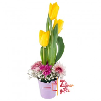 Lovely Simple Yellow Tulips