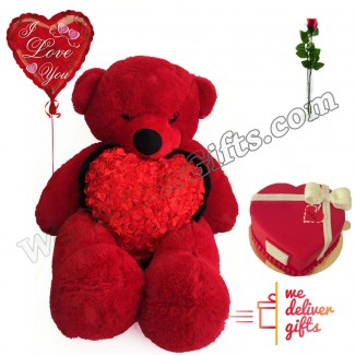 Hold you close to my Heart Valentine Package