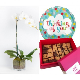 Chocolate Revel Bar Bites Thinking of You Combo