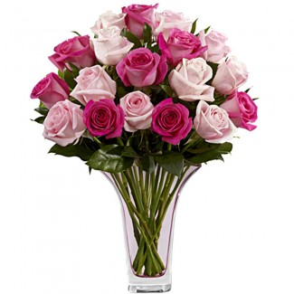Multi Colored Pink Roses in a Vase