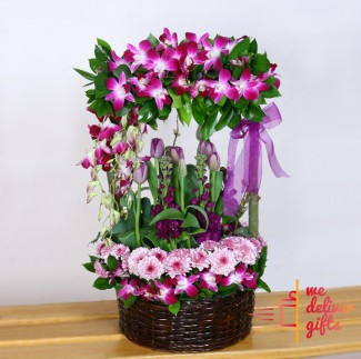Breathless Purple Spring Basket
