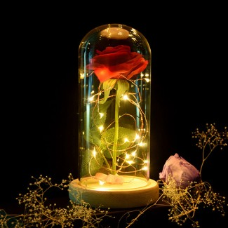 LED Night Light Fairy Eternal Rose