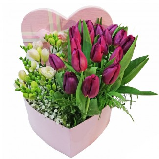 Pink Heart Tulips with Gypsophil