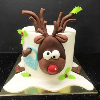 The Funny Raindeer Cake