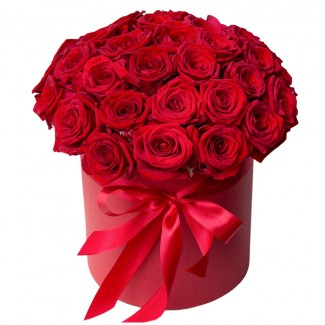 Red roses in red cylinder