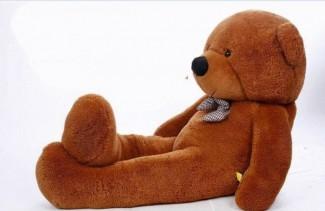 Brown Bear Peluche