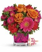 Beauty queen Flowers